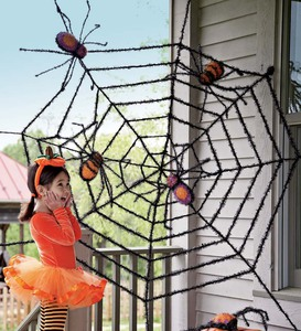 2 Giant Spiders and Web