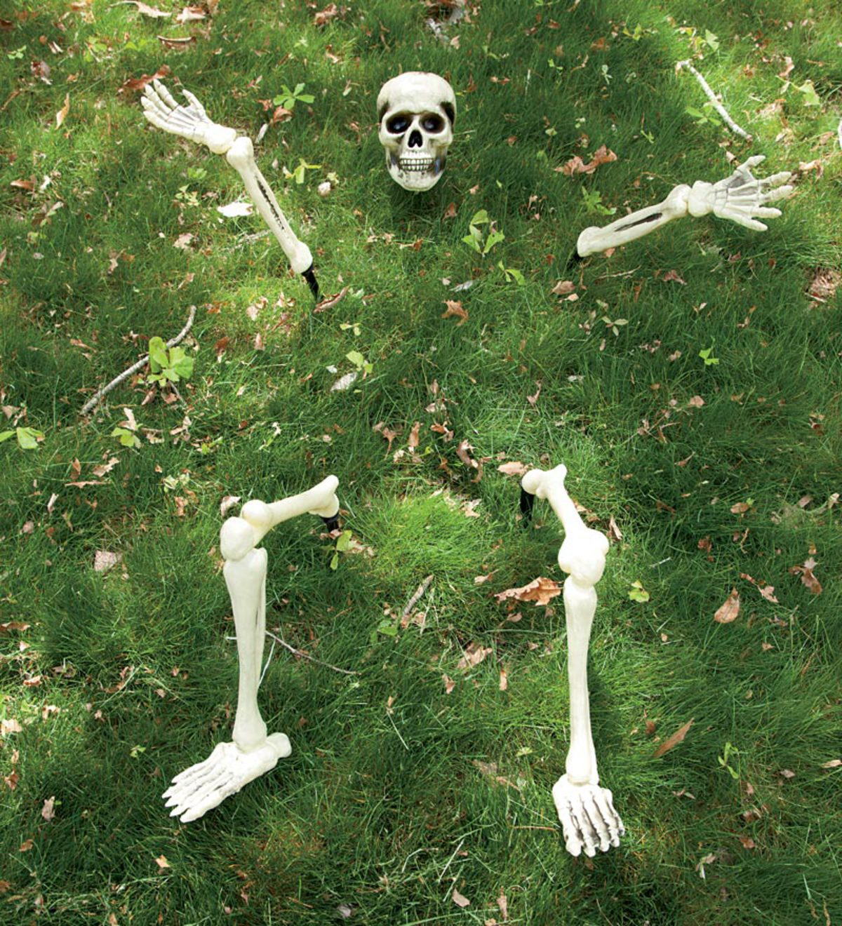 Buried in the Lawn Skeleton Halloween Decoration
