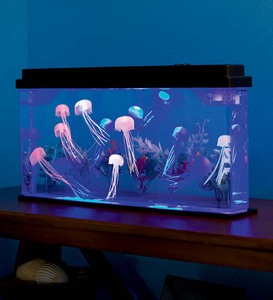 Jellyfish Aquarium with Color-Changing LED Lights