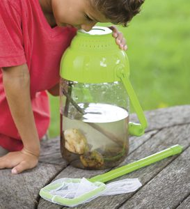 Water Bug Viewer Container with Net