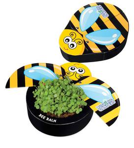 Busy Bug Butterfly Garden Kits (Set of 2) - Butterfly