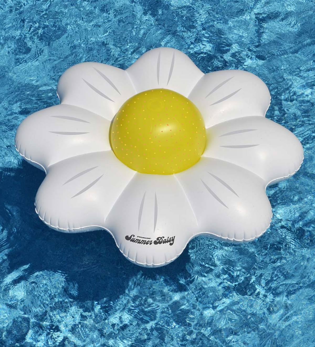 Summer Daisy Pool Float Combo