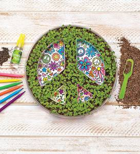 Peace Sign Growing Kit