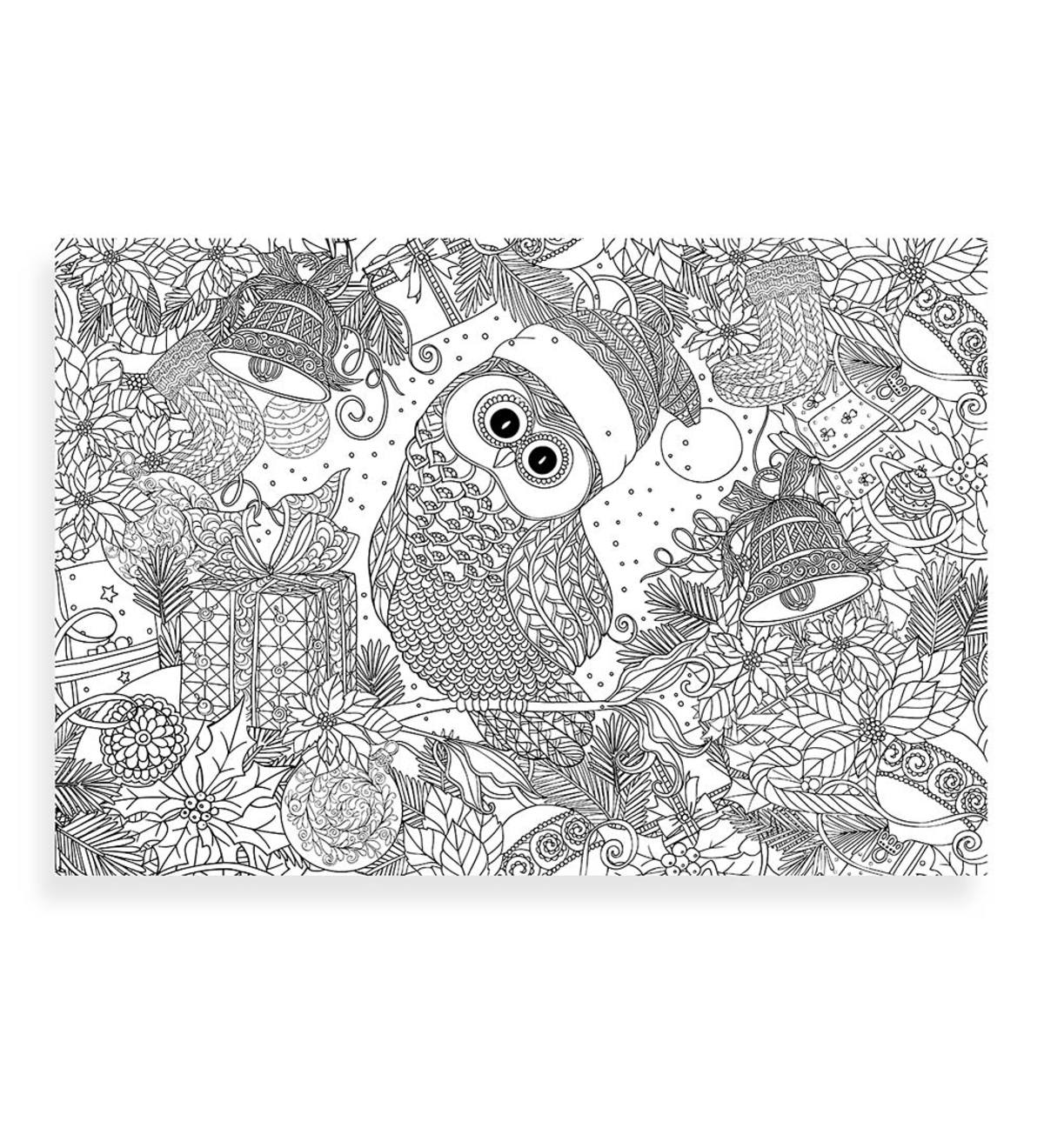 Kids' 300-Piece Holiday Color-Me Jigsaw Puzzle - Holly Jolly Owl