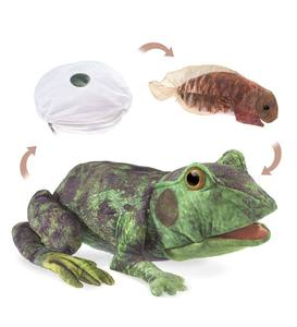 Frog Life Cycle Hand Puppet