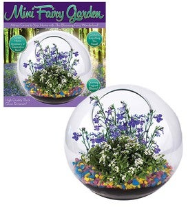 Mini Fairy Garden Kit