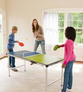 Pick-Up-And-Go Table Tennis