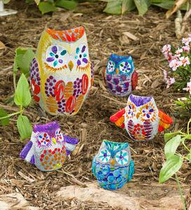 Color Pops Paint-Your-Own Pet Rocks: Owls