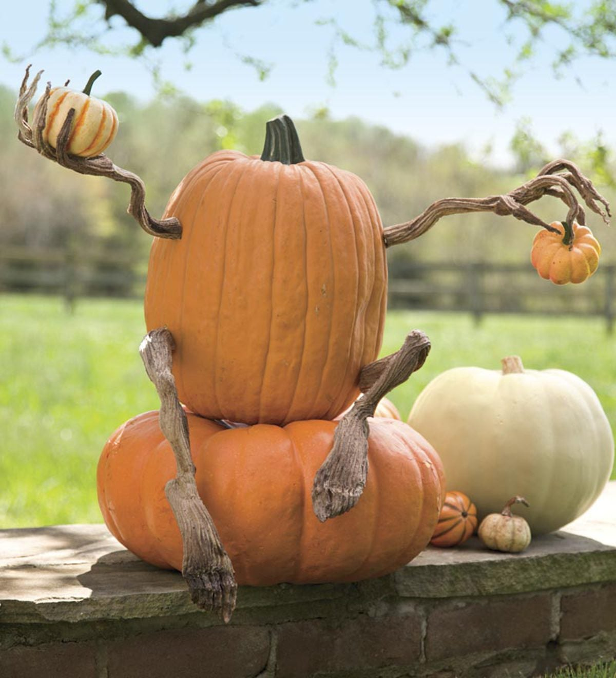 Pumpkin Appendages