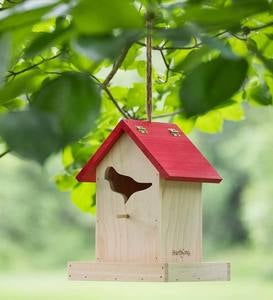 Songbird Feeder with Field Guide