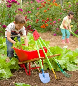 Grow-With-Me Garden Tool Set and Child's Wheelbarrow