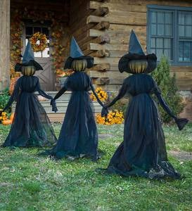 Visiting Witches (set of 3)