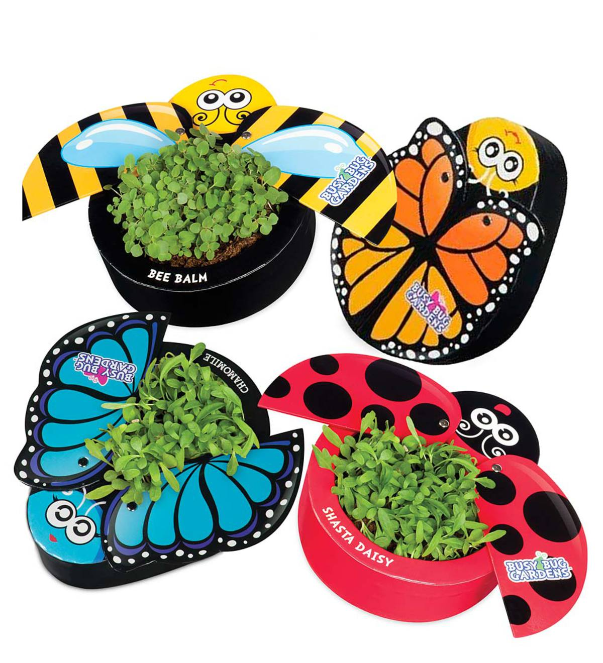 Busy Bug Butterfly Garden Kits (Set Of 2)