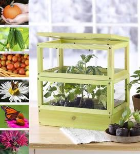 Grow-Up Greenhouse ™ Kit