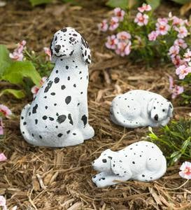 Color Pops® Paint-Your-Own Rock Pets: Dogs