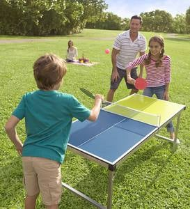 Pick-Up-and-Go Portable Table Tennis