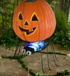 Solar Spider Pumpkin Holder