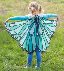 Colorful Butterfly Wings