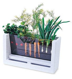 Rootvue Indoor Garden Laboratory Kit with Seeds, Soil, and Growing Guide